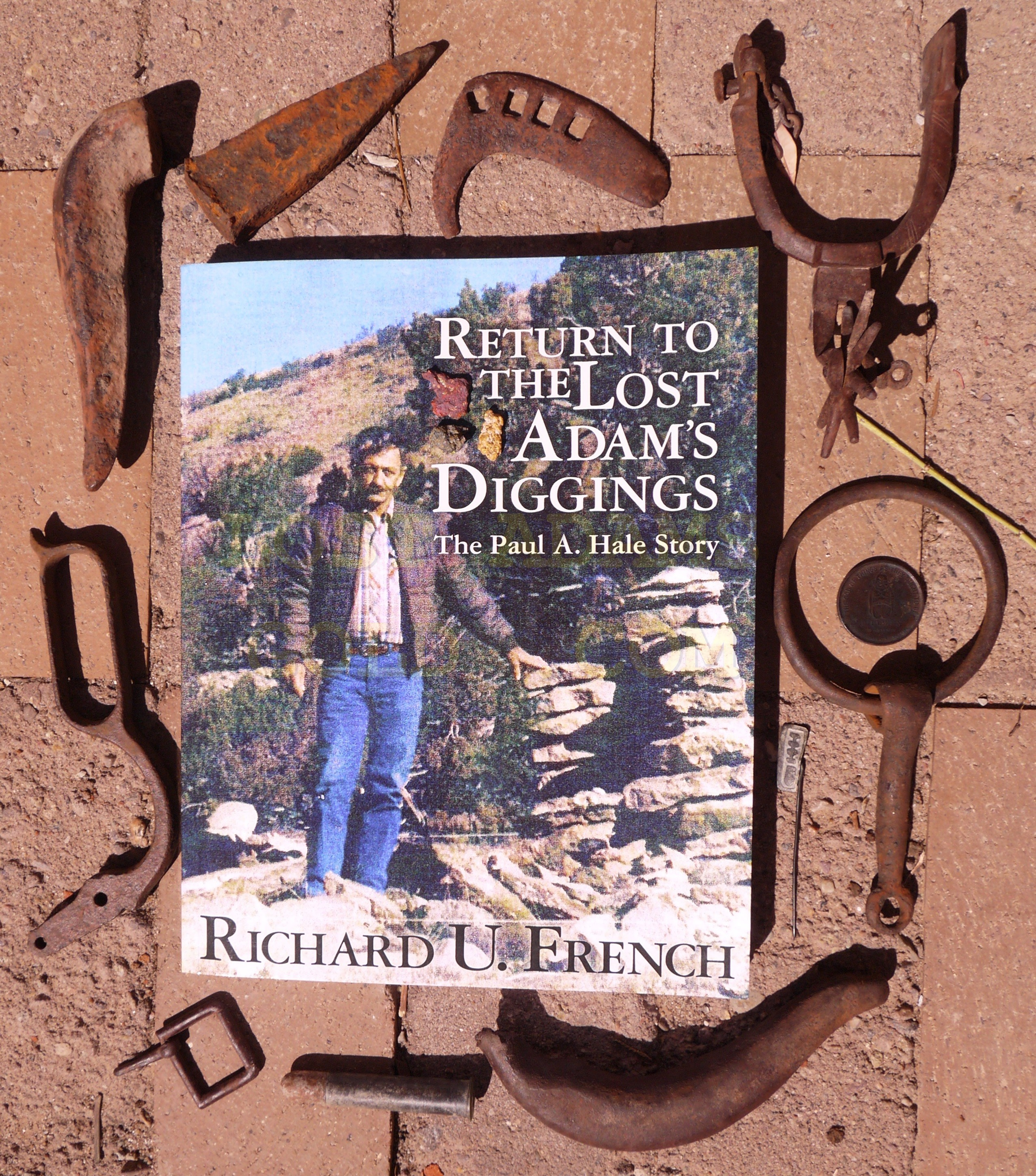 New Book on The Lost Adams Diggings Gold Treasure Legend by Dick French
